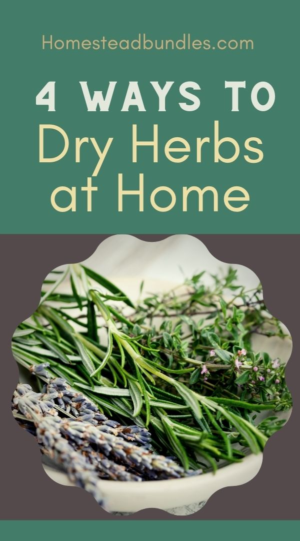 Want to learn how to dry herbs? These techniques will get you started right away! #herbs #homesteading