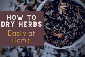 dry herbs in a white bowl